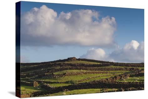 Spain, Canary Islands, Lanzarote, Guatiza, Northern Landscape-Walter Bibikow-Stretched Canvas Print