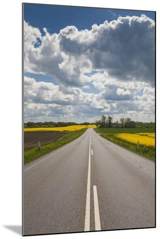 Denmark, Jutland, Hobro, Country Road with Rapeseed Fields, Springtime-Walter Bibikow-Mounted Photographic Print