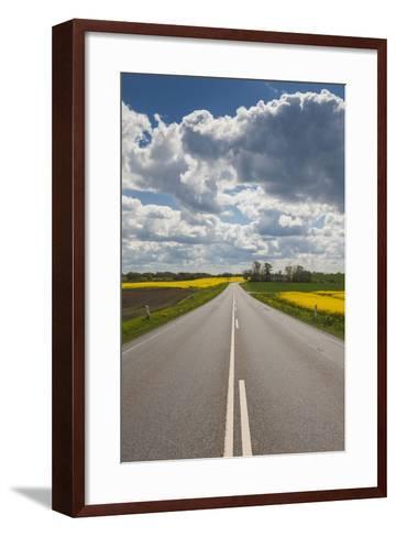 Denmark, Jutland, Hobro, Country Road with Rapeseed Fields, Springtime-Walter Bibikow-Framed Art Print