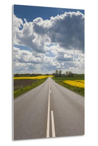 Denmark, Jutland, Hobro, Country Road with Rapeseed Fields, Springtime-Walter Bibikow-Metal Print