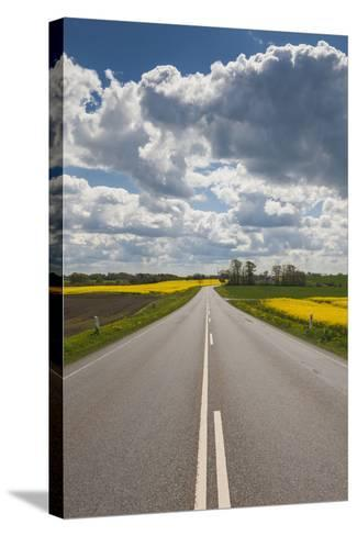 Denmark, Jutland, Hobro, Country Road with Rapeseed Fields, Springtime-Walter Bibikow-Stretched Canvas Print