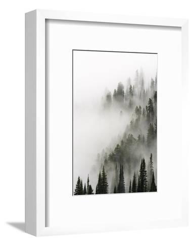 Cloud Forest, Glacier National Park, Montana-Russ Bishop-Framed Art Print