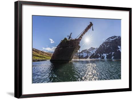 Ocean Harbor, South Georgia Island. the Shipwreck Bayard on Beach at Sunrise-Jaynes Gallery-Framed Art Print