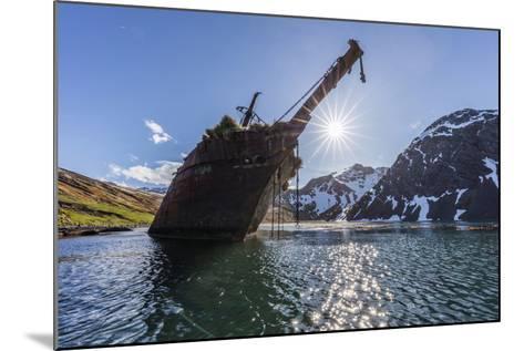 Ocean Harbor, South Georgia Island. the Shipwreck Bayard on Beach at Sunrise-Jaynes Gallery-Mounted Photographic Print