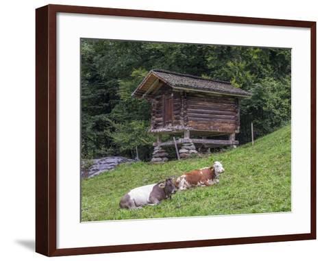 Switzerland, Bern Canton, Ballenberg, Dairy Cows and Cheese Storehouse-Jamie And Judy Wild-Framed Art Print