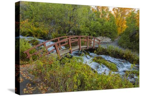 Utah, Wasatch Cache National Forest. Bridge over Stream-Jaynes Gallery-Stretched Canvas Print