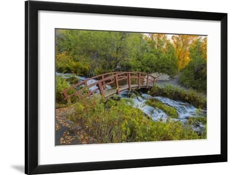 Utah, Wasatch Cache National Forest. Bridge over Stream-Jaynes Gallery-Framed Art Print
