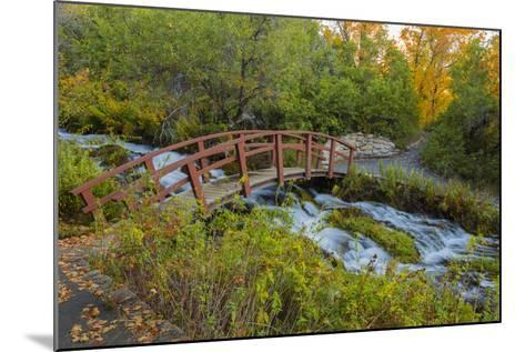 Utah, Wasatch Cache National Forest. Bridge over Stream-Jaynes Gallery-Mounted Photographic Print