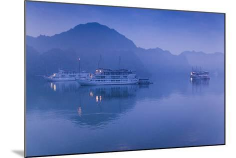 Vietnam, Halong Bay, Tourist Boats, Dawn-Walter Bibikow-Mounted Photographic Print