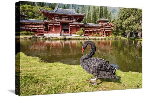 Byodo-In Temple, Valley of the Temples, Kaneohe, Oahu, Hawaii-Michael DeFreitas-Stretched Canvas Print