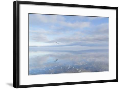 Washington State, Hood Canal. Winter Sunrise Mirrored in Hood Canal-Jaynes Gallery-Framed Art Print