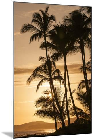 Sunset at Poipu Beach, Kauai, Hawaii-Michael DeFreitas-Mounted Photographic Print
