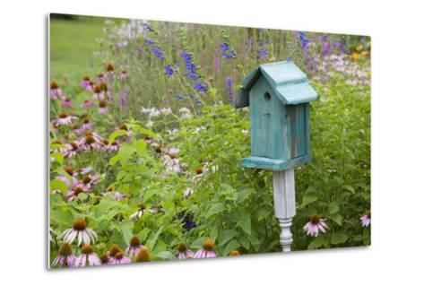 Blue Birdhouse in Flower Garden with Purple Coneflowers and Salvias, Marion County, Illinois-Richard and Susan Day-Metal Print