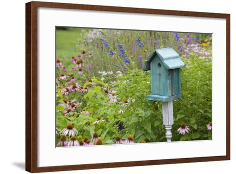 Blue Birdhouse in Flower Garden with Purple Coneflowers and Salvias, Marion County, Illinois-Richard and Susan Day-Framed Art Print