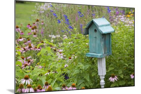 Blue Birdhouse in Flower Garden with Purple Coneflowers and Salvias, Marion County, Illinois-Richard and Susan Day-Mounted Photographic Print
