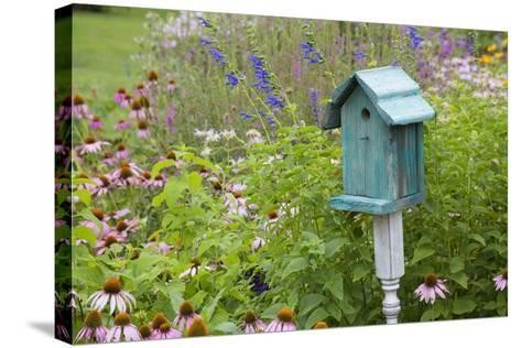 Blue Birdhouse in Flower Garden with Purple Coneflowers and Salvias, Marion County, Illinois-Richard and Susan Day-Stretched Canvas Print