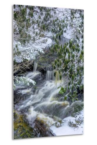 West Virginia, Blackwater Falls State Park. Blackwater River in Winter-Jaynes Gallery-Metal Print