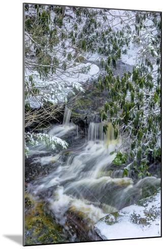West Virginia, Blackwater Falls State Park. Blackwater River in Winter-Jaynes Gallery-Mounted Photographic Print