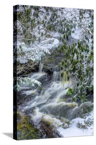 West Virginia, Blackwater Falls State Park. Blackwater River in Winter-Jaynes Gallery-Stretched Canvas Print
