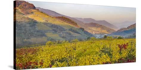 Village Spitz Nested in the Vineyards of the Wachau. Austria-Martin Zwick-Stretched Canvas Print