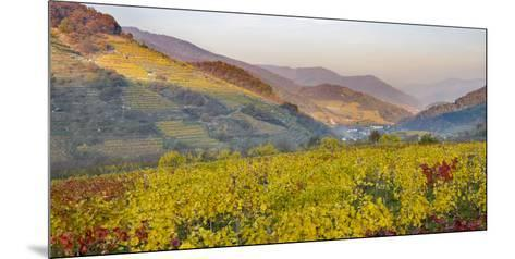 Village Spitz Nested in the Vineyards of the Wachau. Austria-Martin Zwick-Mounted Photographic Print