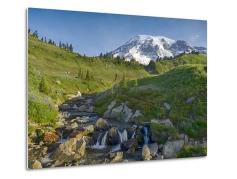 Wa, Mount Rainier National Park, Mount Rainier and Edith Creek-Jamie And Judy Wild-Metal Print