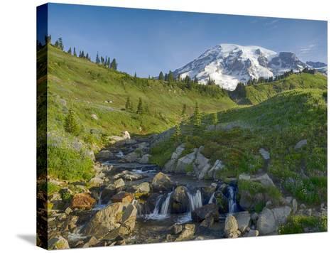 Wa, Mount Rainier National Park, Mount Rainier and Edith Creek-Jamie And Judy Wild-Stretched Canvas Print