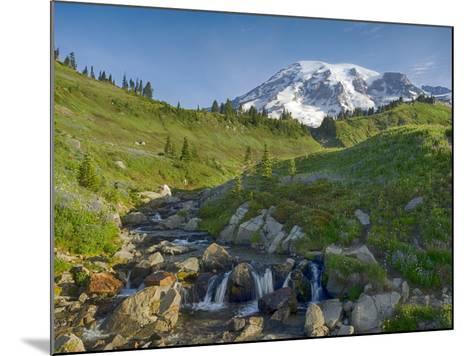 Wa, Mount Rainier National Park, Mount Rainier and Edith Creek-Jamie And Judy Wild-Mounted Photographic Print