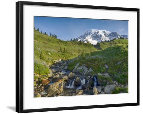 Wa, Mount Rainier National Park, Mount Rainier and Edith Creek-Jamie And Judy Wild-Framed Art Print