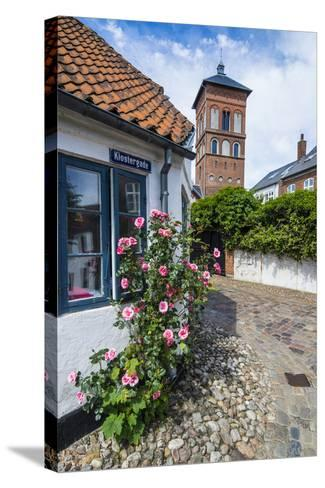 Flower Bush before a Historic House in Ribe, Denmark's Oldest Surviving City, Jutland, Denmark-Michael Runkel-Stretched Canvas Print