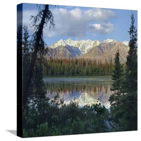 Kluane Range, Kluane National Park, Yukon, Canada-Tim Fitzharris-Stretched Canvas Print