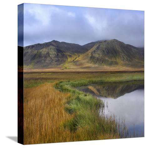 Ogilvie Mountains and Tundra Tarn, Yukon Territories, Canada-Tim Fitzharris-Stretched Canvas Print
