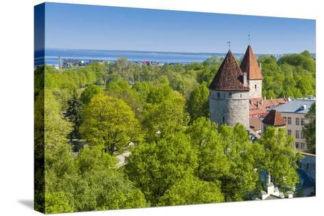View of Tallinn from Toompea Hill, Old Town of Tallinn, Estonia, Baltic States-Nico Tondini-Stretched Canvas Print