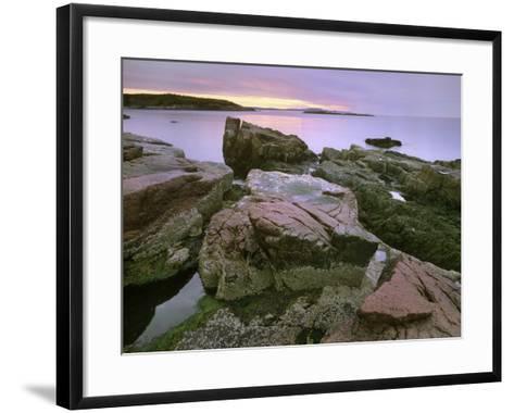 Atlantic Ocean Near Thunder Hole, Acadia National Park, Maine-Tim Fitzharris-Framed Art Print
