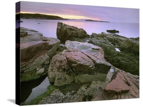 Atlantic Ocean Near Thunder Hole, Acadia National Park, Maine-Tim Fitzharris-Stretched Canvas Print
