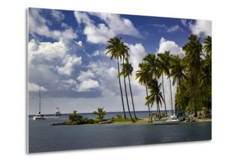 Palm Trees at Entrance to Marigot Bay, St. Lucia, West Indies-Brian Jannsen-Metal Print