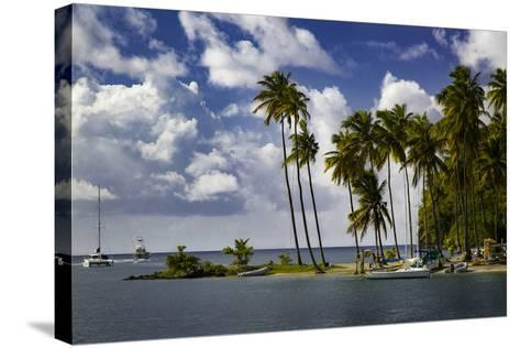 Palm Trees at Entrance to Marigot Bay, St. Lucia, West Indies-Brian Jannsen-Stretched Canvas Print
