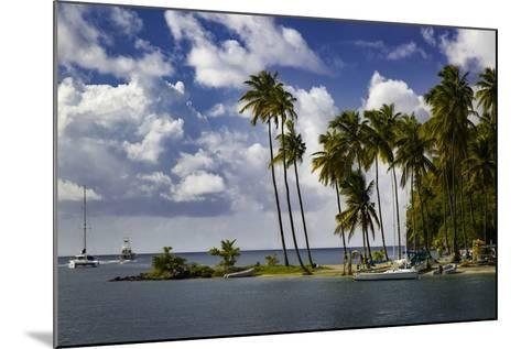 Palm Trees at Entrance to Marigot Bay, St. Lucia, West Indies-Brian Jannsen-Mounted Photographic Print