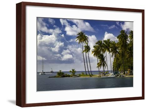 Palm Trees at Entrance to Marigot Bay, St. Lucia, West Indies-Brian Jannsen-Framed Art Print