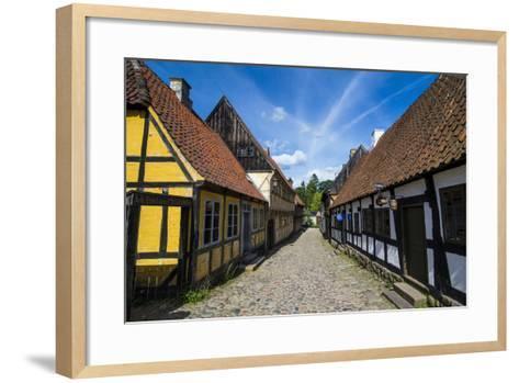 Buildings in the Old Town, Aarhus, Denmark-Michael Runkel-Framed Art Print
