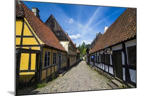 Buildings in the Old Town, Aarhus, Denmark-Michael Runkel-Mounted Photographic Print