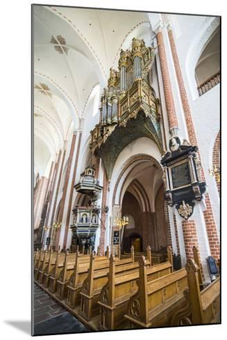 Historic Pipe Organ in UNESCO World Heritage Site, the Cathedral of Roskilde, Denmark-Michael Runkel-Mounted Photographic Print