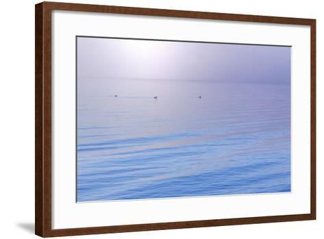 Washington State, Seabeck. Foggy Sunrise over Hood Canal-Jaynes Gallery-Framed Art Print