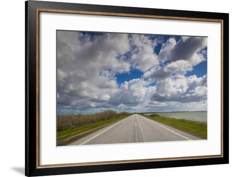 Denmark, Jutland, Oslos, Route 11 Road by the Limfjorden-Walter Bibikow-Framed Art Print