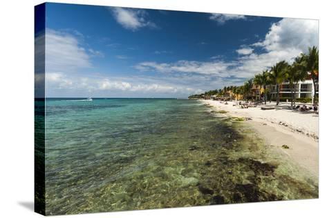 Cozumel Island, Mexico-Sergio Pitamitz-Stretched Canvas Print