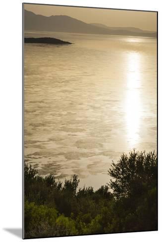 Lake Ichkeul, National Park of Ichkeul, Bizerte Province, Tunisia, North Africa-Nico Tondini-Mounted Photographic Print