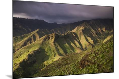 Spain, Canary Islands, La Gomera, Valle De Hermigua, Mountain Landscape, Dawn-Walter Bibikow-Mounted Photographic Print