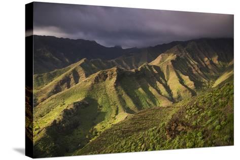 Spain, Canary Islands, La Gomera, Valle De Hermigua, Mountain Landscape, Dawn-Walter Bibikow-Stretched Canvas Print