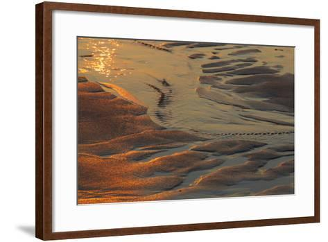 Patterns in the Sand at Coast Guard Beach in the Cape Cod National Seashore-Jerry and Marcy Monkman-Framed Art Print