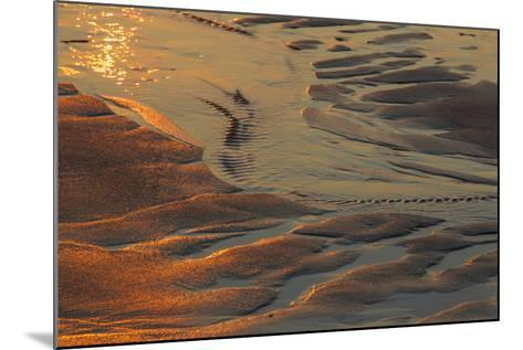 Patterns in the Sand at Coast Guard Beach in the Cape Cod National Seashore-Jerry and Marcy Monkman-Mounted Photographic Print